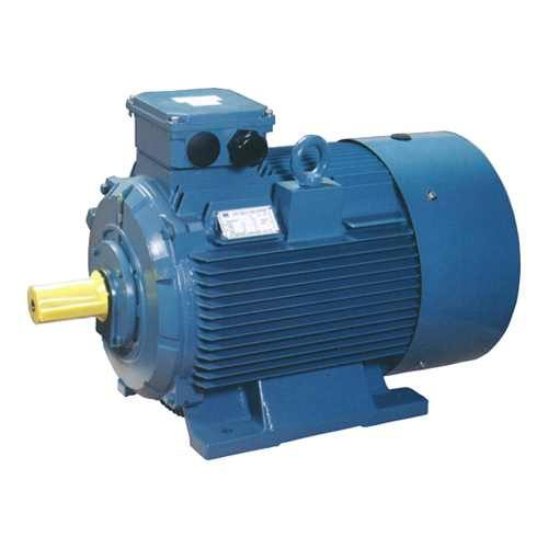 WY Series Induction Motor